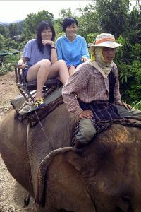 Elephantcamp Nordthailand