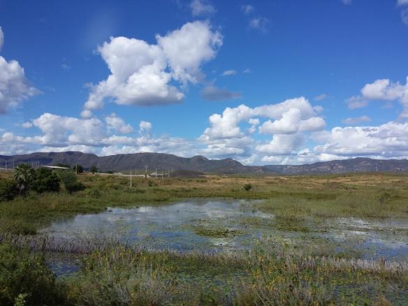 Landschaft auf dem Weg nach Fortaleza